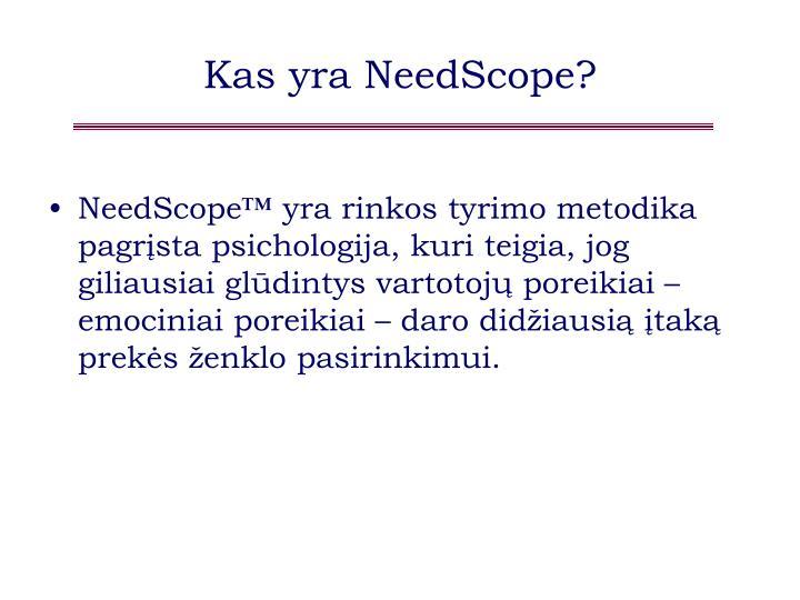 Kas yra NeedScope?