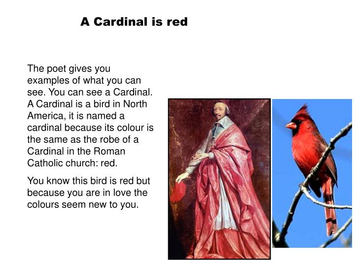 A Cardinal is red