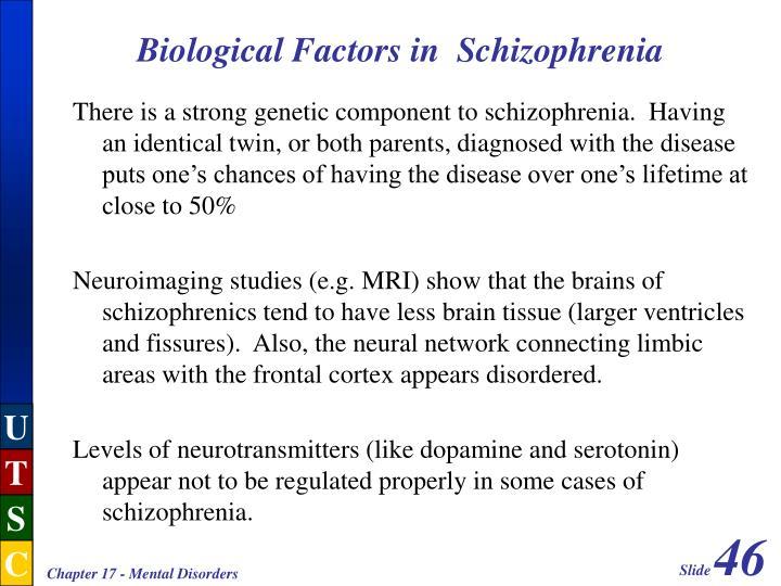 Biological Factors in  Schizophrenia