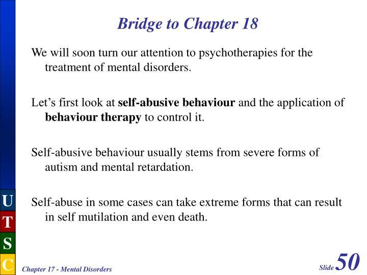 Bridge to Chapter 18