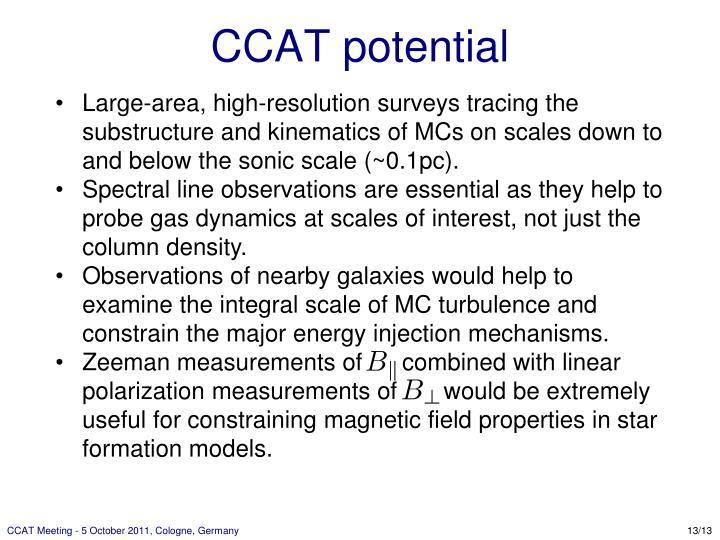 CCAT potential