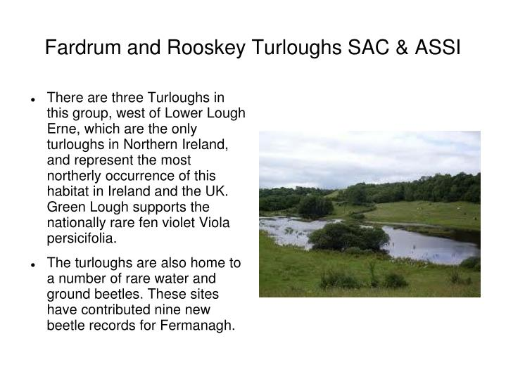 Fardrum and Rooskey Turloughs SAC & ASSI