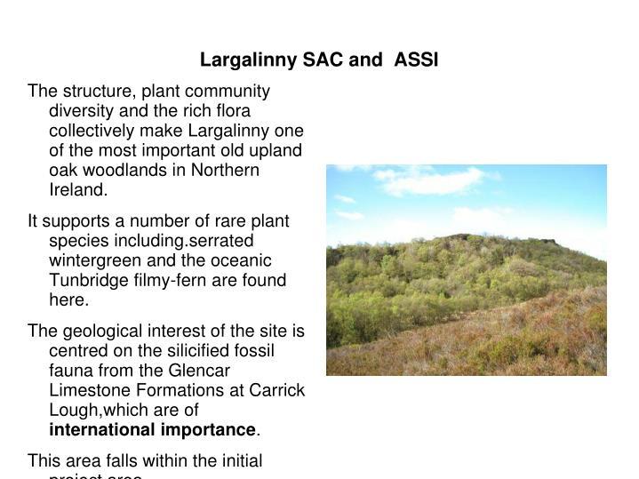 Largalinny SAC and  ASSI