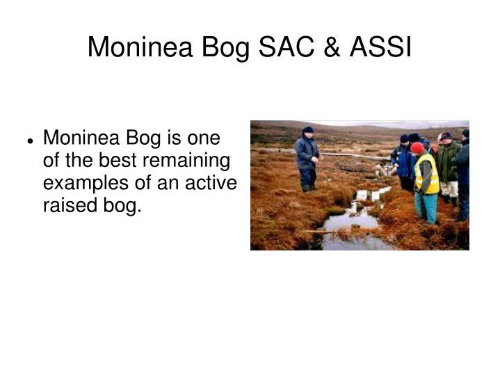 Moninea Bog SAC & ASSI