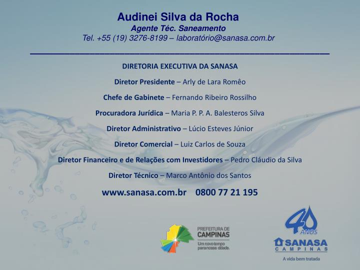 Audinei Silva da Rocha