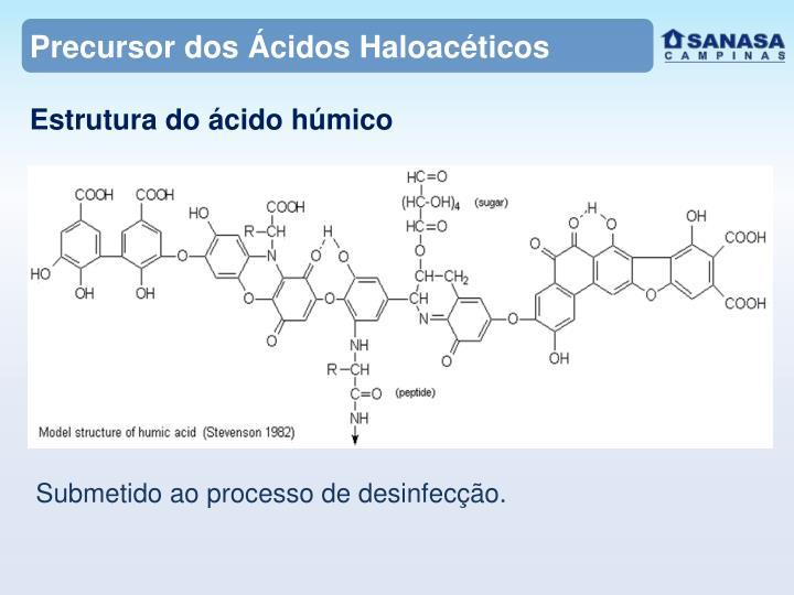 Precursor dos Ácidos Haloacéticos