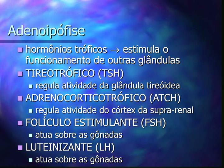Adenoipófise