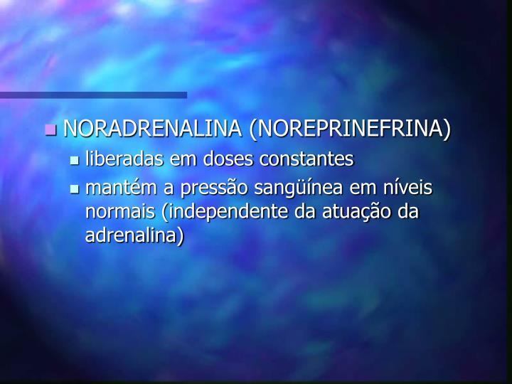 NORADRENALINA (NOREPRINEFRINA)