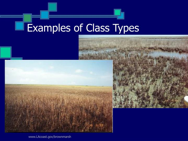 Examples of Class Types
