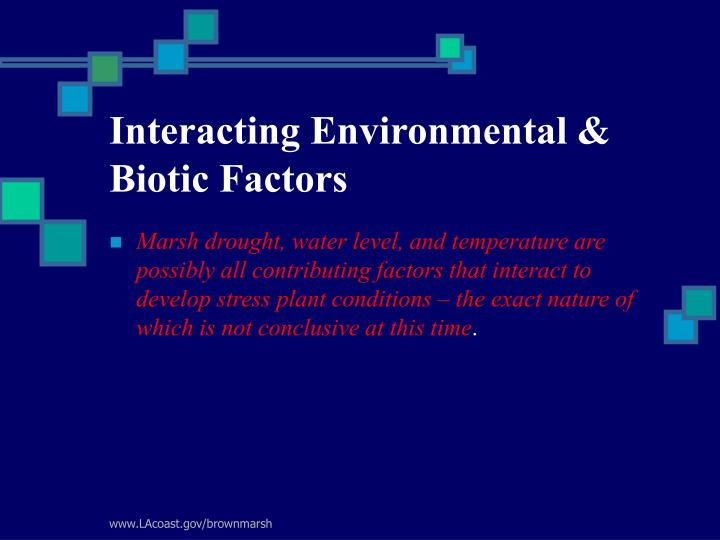 Interacting Environmental & Biotic Factors