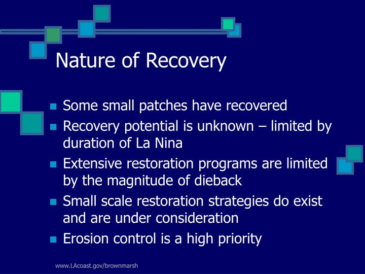 Nature of Recovery