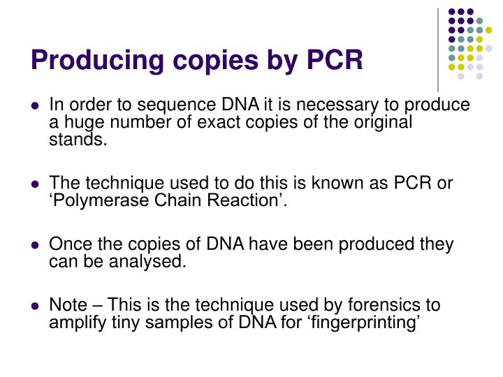 Producing copies by PCR