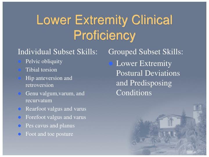 Individual Subset Skills: