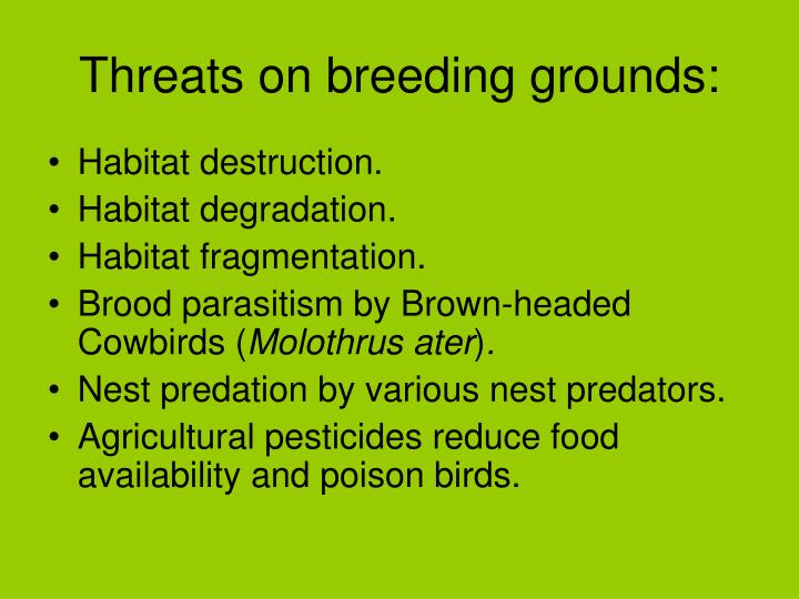 Threats on breeding grounds: