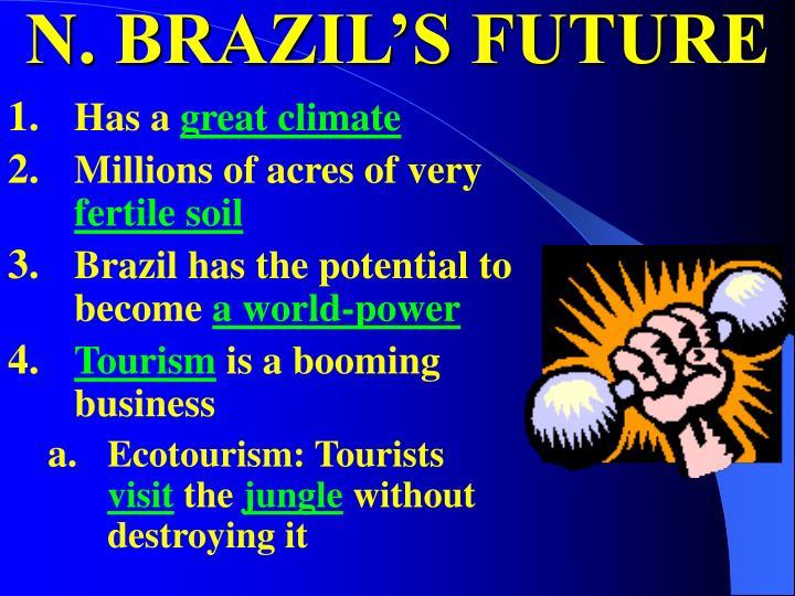 N. BRAZIL'S FUTURE