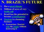 n brazil s future