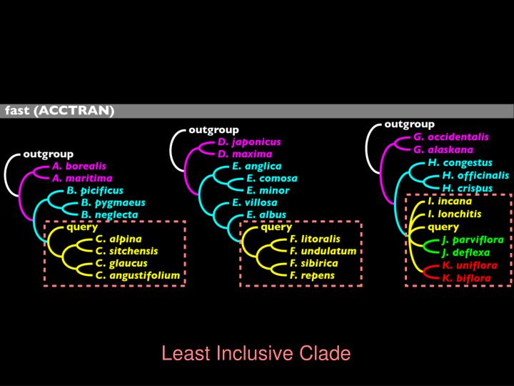 Least Inclusive Clade