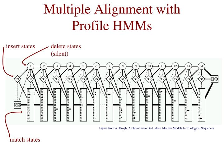 Multiple Alignment with