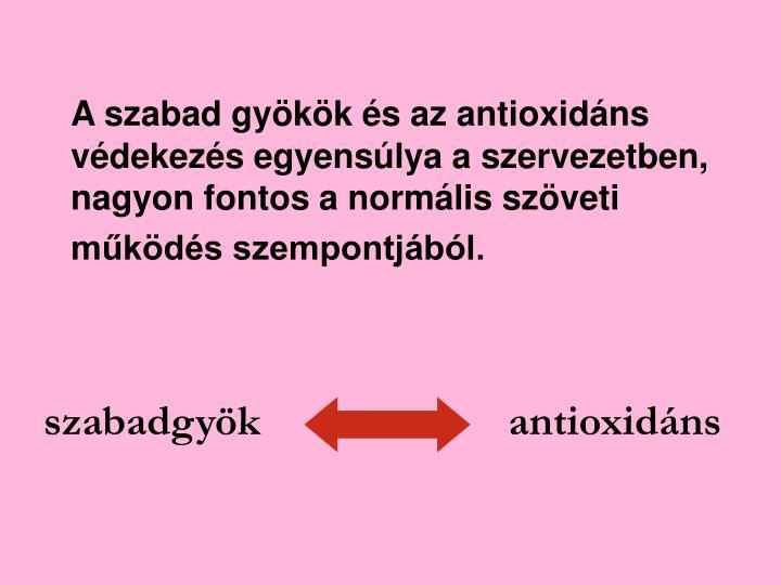A szabad gyökök és az antioxidáns védekezés egyensúlya a szervezetben, nagyon fontos a normális szöveti működés szempontjából.