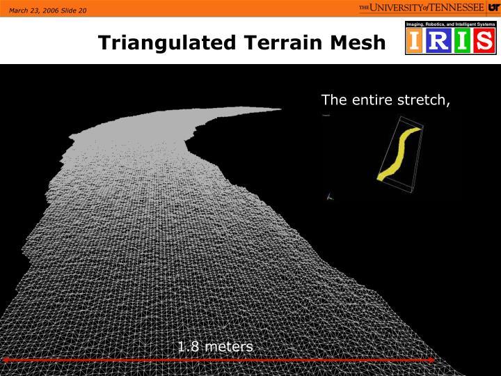 Triangulated Terrain Mesh
