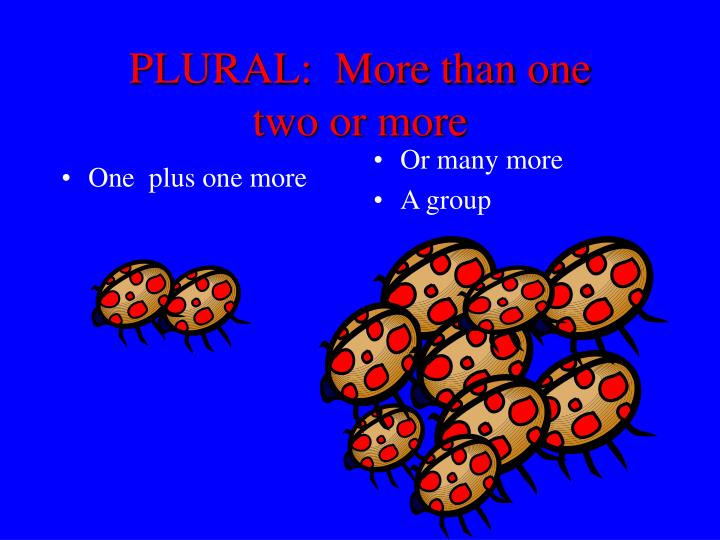 Plural more than one two or more