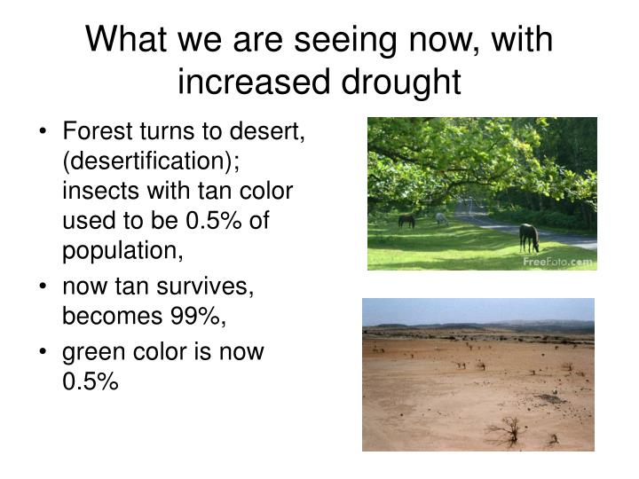 What we are seeing now, with increased drought