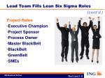lead team fills lean six sigma roles