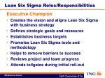lean six sigma roles responsibilities