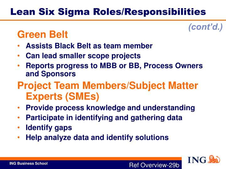 Lean Six Sigma Roles/Responsibilities