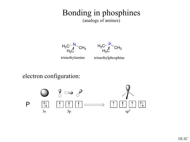 Bonding in phosphines