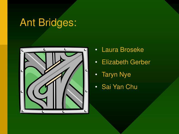 Ant Bridges: