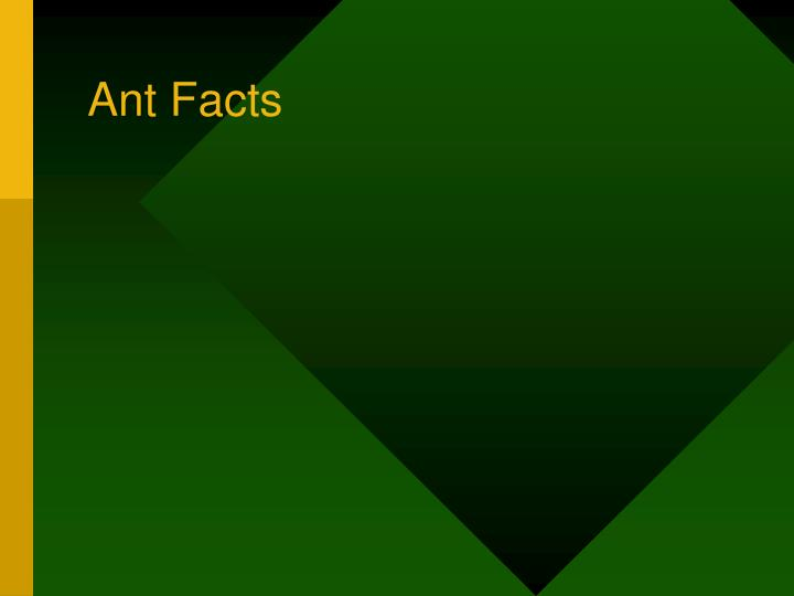 Ant Facts