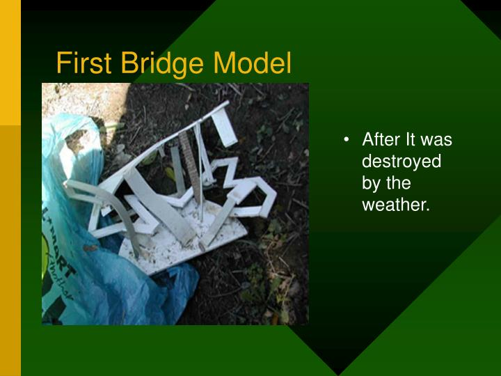 First Bridge Model