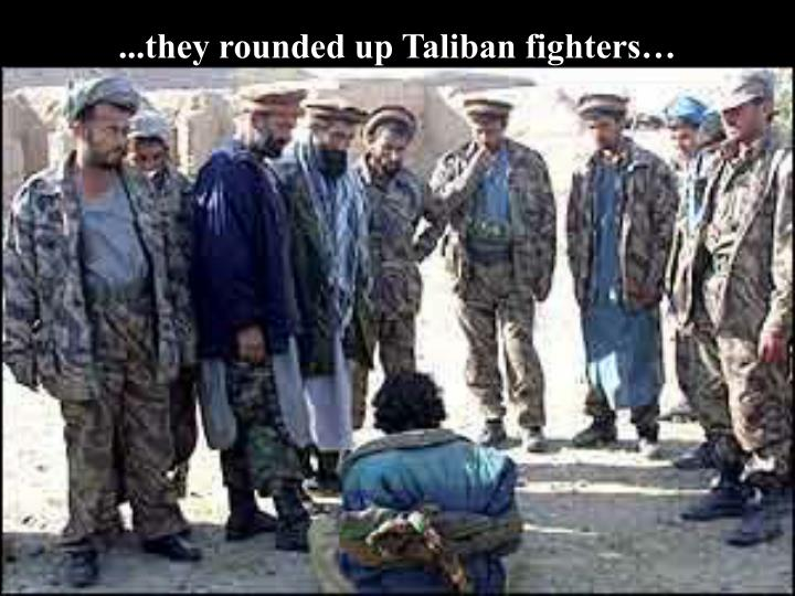 ...they rounded up Taliban fighters…