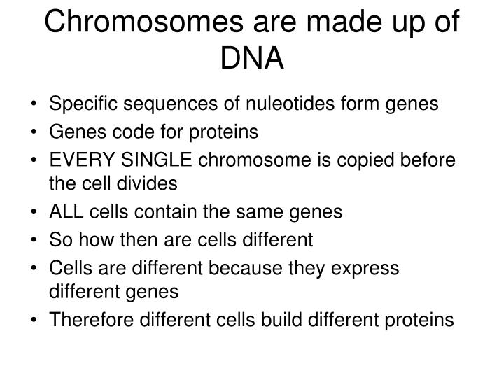 Chromosomes are made up of DNA