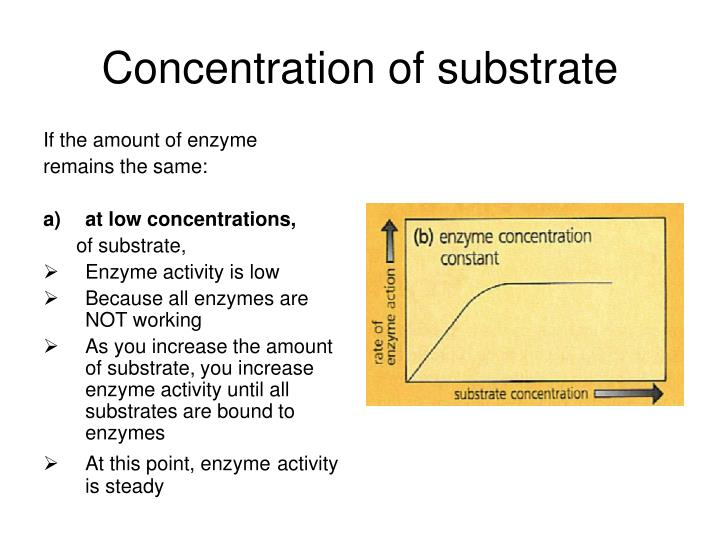 Concentration of substrate