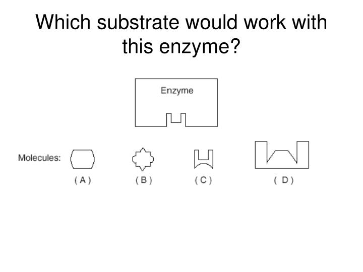 Which substrate would work with this enzyme?