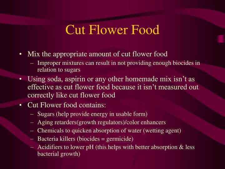 Cut Flower Food