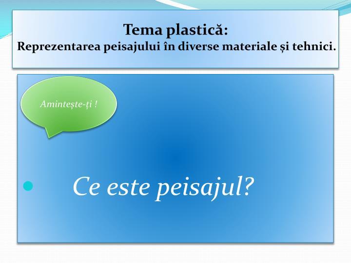 Tema plastică: