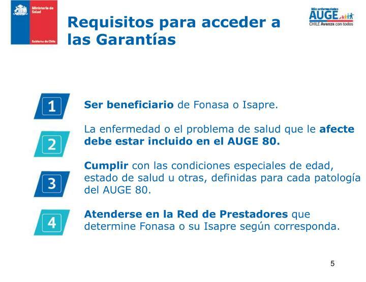 Requisitos para acceder a las Garantías