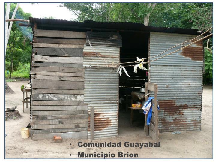 Comunidad Guayabal