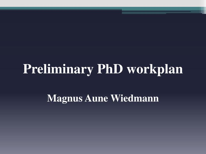 Preliminary PhD workplan