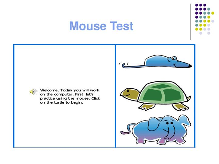 Mouse Test