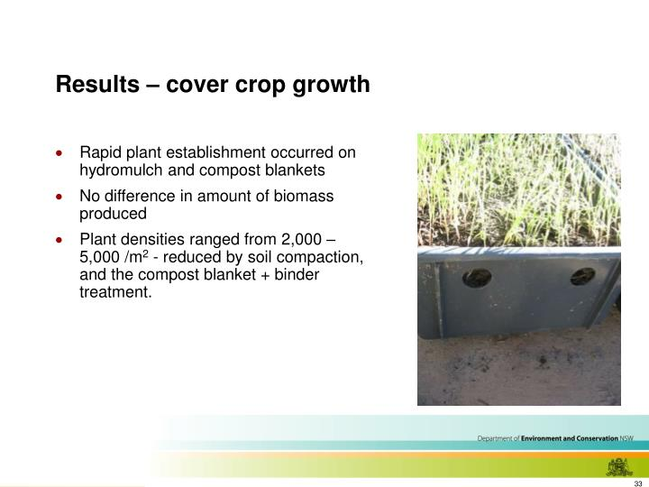 Results – cover crop growth