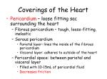 coverings of the heart