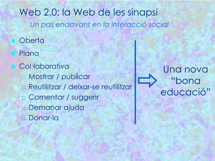 Web 2.0: la Web de les sinapsi