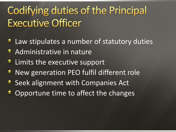 Codifying duties of the Principal Executive Officer