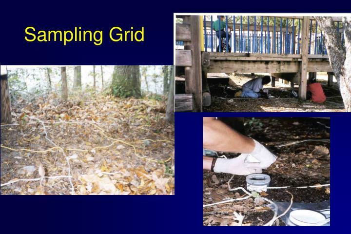 Sampling Grid