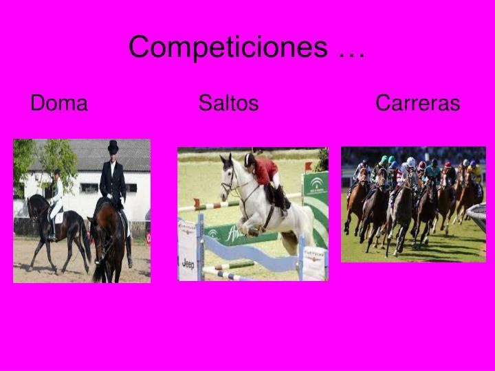 Competiciones …