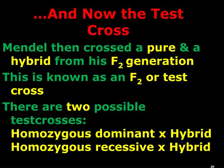 …And Now the Test Cross